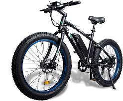 Ecotric Fat Tire Electric Beach Bike