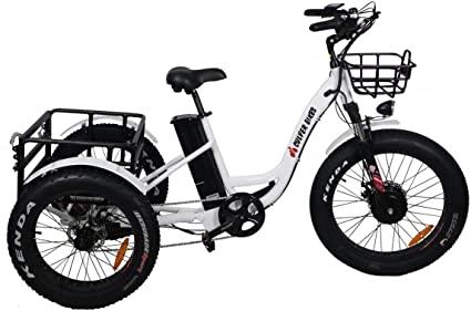 Electric Fat Trike